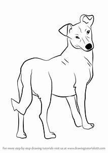 Step by Step How to Draw a Cute Dog : DrawingTutorials101.com