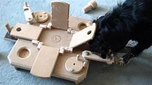 Hunde Intelligenzspielzeug Selber Machen : 1 intelligenzspielzeug perro mit pauli s commander youtube ~ A.2002-acura-tl-radio.info Haus und Dekorationen