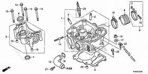 Honda Motorcycle 2019 Oem Parts Diagram For Cylinder Head