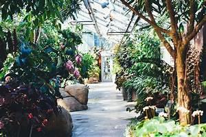 Dwell36039s local garden center farm picks dwell360 for Local garden centers