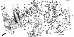 Honda Motorcycle 2010 Oem Parts Diagram For Radiator