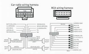 Bos Audio Wiring Harnes