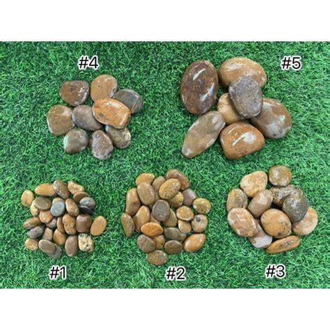 หินแม่น้ำ หินแต่งสวน สีน้ำตาล เบอร์ 1,2,3,4,5 | Shopee ...
