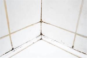 Schimmel In Fugen : schimmel entfernen mit hausmitteln 9 tipps tricks ~ Watch28wear.com Haus und Dekorationen