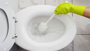 Toilette Verstopft Tipps : hygiene tipps f r eine saubere toilette news at ~ Markanthonyermac.com Haus und Dekorationen