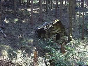 Hütte Im Wald Bauen : verfallene blockh tte im wald ~ A.2002-acura-tl-radio.info Haus und Dekorationen