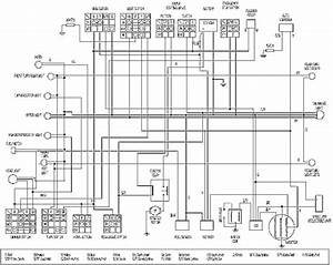 Wiring Diagram For A Spirit Scooter 217 B4