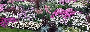 Pflanzen Bewässern Urlaub : unser lagerhaus blog der ziergarten im julider ~ Michelbontemps.com Haus und Dekorationen
