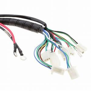 Wire Wiring Harness Loom For 110cc 125cc 250cc Pit Bike