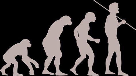 Iššūkis Darwino teorijai: kodėl ne visos beždžionės tapo ...