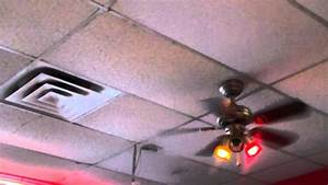 Hampton Bay San Marino Ceiling Fans With Colored Bulbs