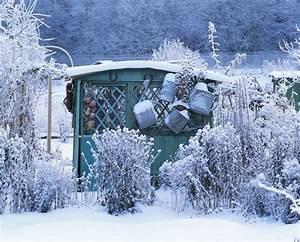 Blumen Im Winter : blumen im garten pflanzen was bedeutet winterhart ~ Eleganceandgraceweddings.com Haus und Dekorationen