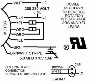 Ceiling Fan 3 Sd Motor Wiring Diagram