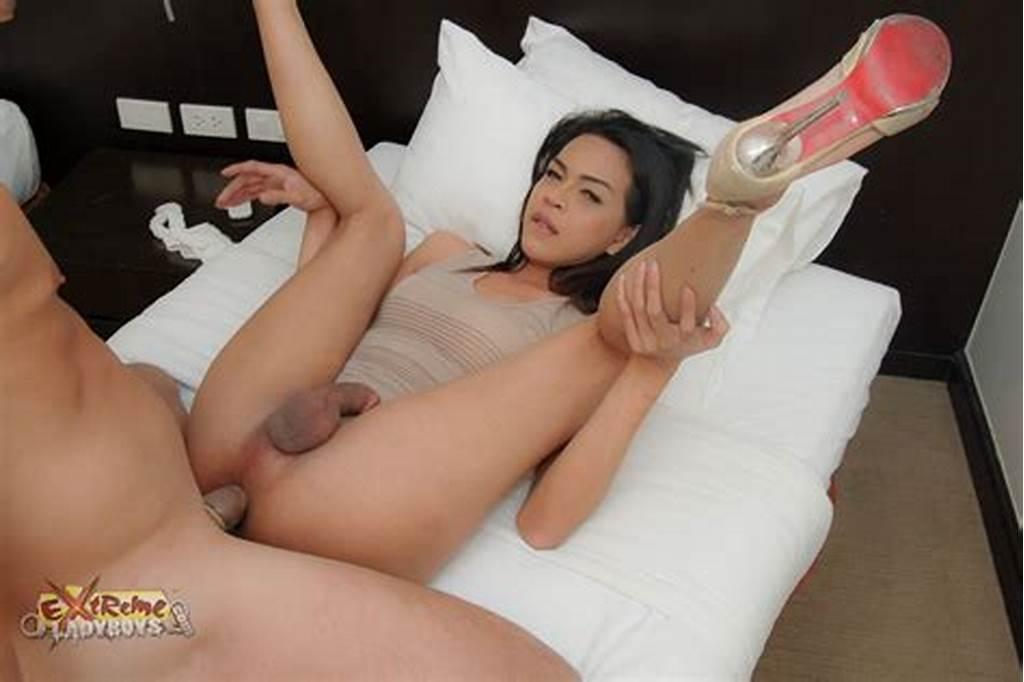 #Yuong #Ladyboys #Sex #Pictures
