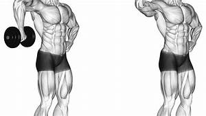 Best Shoulder Exercises For Great Results