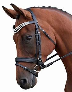 Bay Horse Black English Bridle Cross Country Show Jumping ...