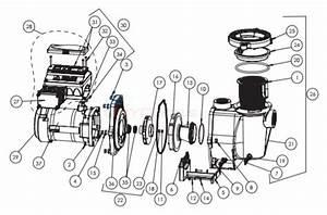 Pentair Intelliflo Variable Speed  U0026 Vs   Svrs Parts