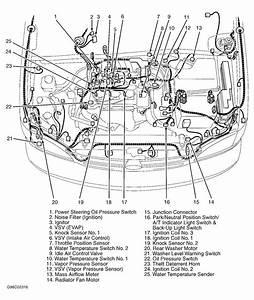 2001 Toyota Avalon Xls Engine Diagram
