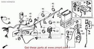 1985 Honda Cmx250c Ignition Switch Wiring Diagram