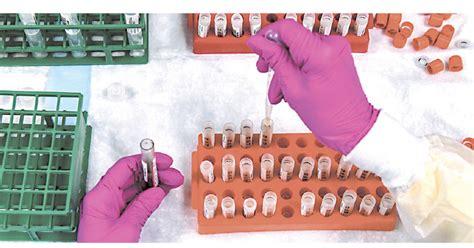 Countries including france, denmark, ireland and thailand have temporarily suspended their use of astrazeneca's coronavirus vaccine after reports that some people developed. Oxford y AstraZeneca suspenden ensayos de vacuna por efecto adverso en paciente - DIARIO AHORA