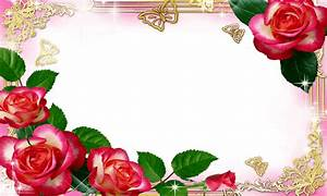 Rose Photo Frame Hd   Wallpaper sportstle