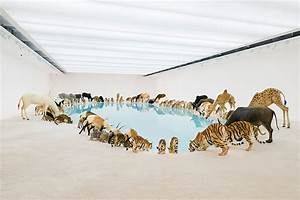 A herd of 99 lifelike animals drink from a pool at qagoma for A herd of 99 lifelike animals drink from a pool at qagoma