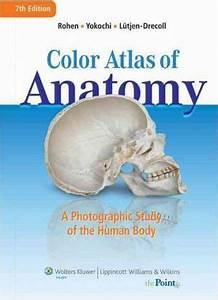 Color Atlas Of Anatomy Johannes W Rohen 9781582558561