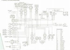Yfm 450 Wiring Diagram