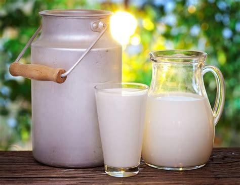 Nenovērtētais pārtikas produkts piens.Uztura speciāliste ...