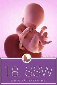 Ssw Berechnen Mit Entbindungstermin : berechnen sie schwangerschaftswoche ssw und geburtstermin mit unserem ssw rechner ausgehend ~ Themetempest.com Abrechnung