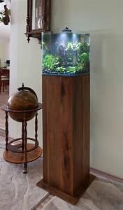 Holz Für Aquarium : aqua ambiente blog oktober 2015 ~ A.2002-acura-tl-radio.info Haus und Dekorationen