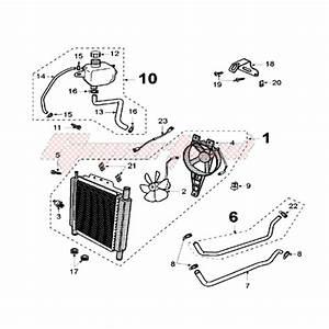 Peugeot Engine Cooling Diagram