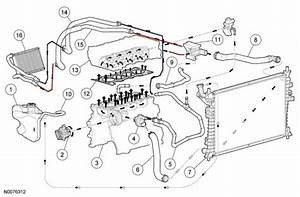 37 2001 Ford Taurus Radiator Hose Diagram  2007 Ford Fusion Fuse Diagram  2007  Free Engine