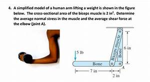 Solved  4  A Simplified Model Of A Human Arm Lifting A Wei