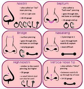 Here U0026 39 S Your Ultimate Guide When It Comes To Piercing Charts