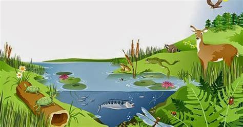 ระบบนิเวศ ( Ecology ): ความสัมพันธ์ในระบบนิเวศ