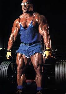 Knights Of Bodybuilding  Nasser El Sonbaty