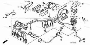 Honda Atv 2005 Oem Parts Diagram For Wire Harness