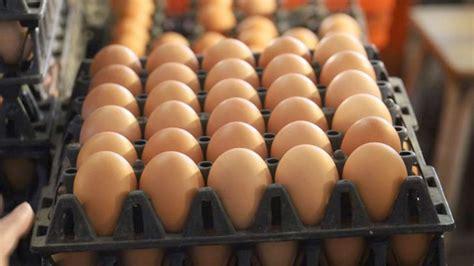 พาณิชย์ เผยสถานการณ์ไข่ไก่ดีขึ้น ตรวจทั่วประเทศ ไม่พบขาย ...