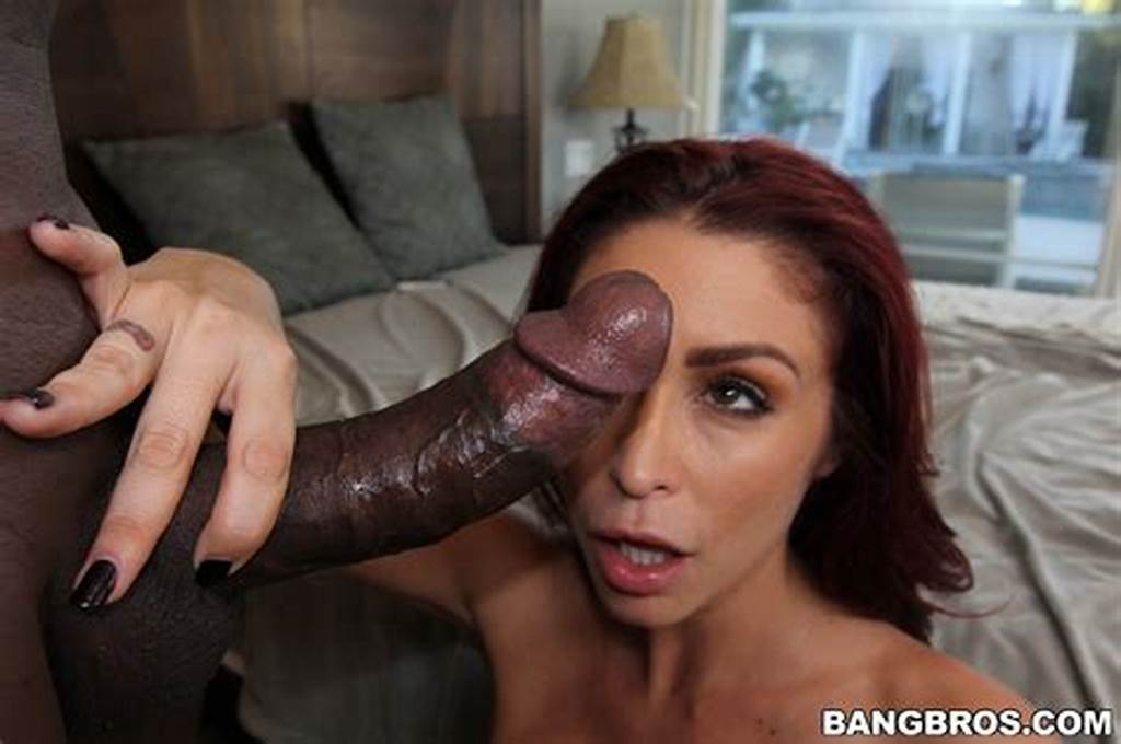 #Monique #Alexander #Swallow