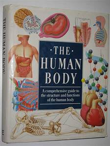 The Human Body   A Comprehensive Guide To The Structure