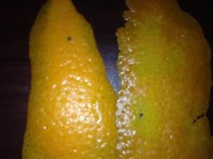 Bleached Anus Before And After Pics | www.pixshark.com ...