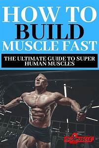 This Is The Definitive Guide On How To Build Muscle Fast  When Looking To Build Muscle Mass And
