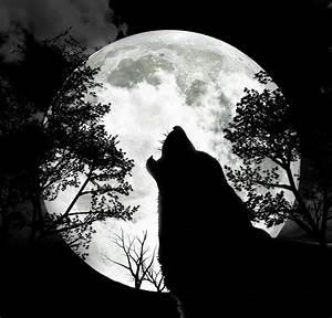 full old moon   Tumblr