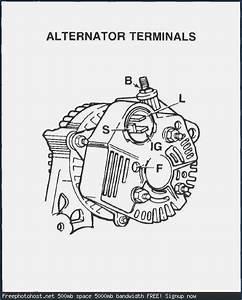 4age 20v Alternator Wiring Diagram  U2013 Brainglue  Con
