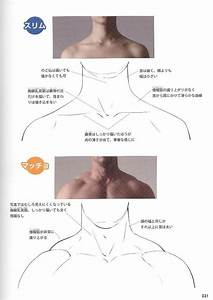 Reference Guide For Drawing Male Muscles  U2013 160