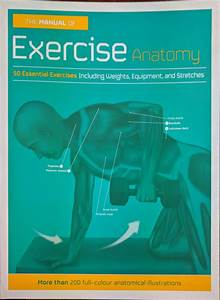 The Manual Of Exercise Anatomy