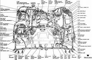 2006 Lincoln Navigator Fuse Box Diagram