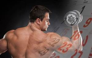 Best Blog With Workout Plans And Advice On Building Muscle  Improving Nutrition  And Using