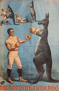 1893: The Kangaroo That Kicked and Boxed at Koster and ...